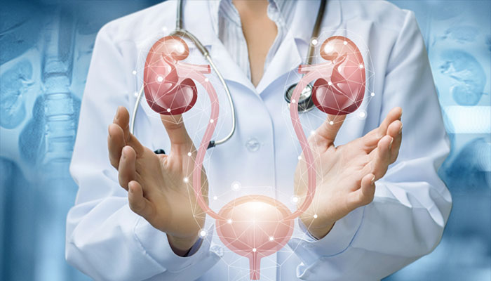 Best Urology And Andrology Clinic Dubai UAE   German Medical Center DHCC